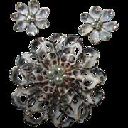 SALE Fabulous Unique Sea Shell Artisan Vintage Pin & Earrings