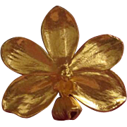 Risis Natural Vanda Candlelight Orchid plated in 24k Gold Brooch/Pendant