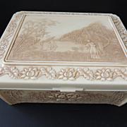 Unique Celluloid Vanity Box