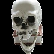 SALE Vintage, Schafer & Vater, Bisque Ceramic Skull Nodding Candle Holder, Halloween, Germany