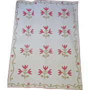 SALE 1800's Applique Quilt- Tulip Sprigs vine border- exceptional quilting