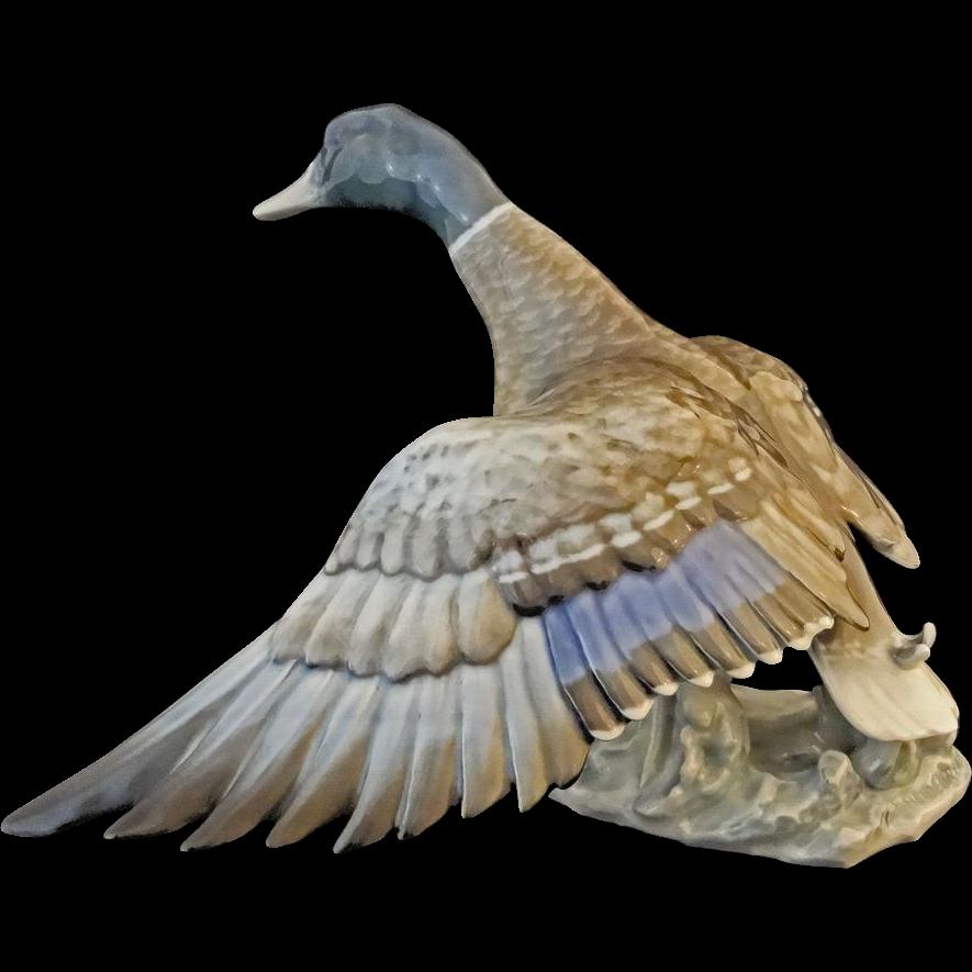 "Wild Duck Rosenthal Porcelain Figurine 13"" Large Signed Heidenreich - 20th Century, Germany"