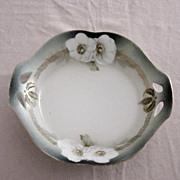 R S Prussia Tillwitz Lilesia Dogwood Flower Bowl