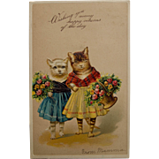 Happy Returns Postcard with Cats, 1907