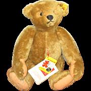 Stieff mohair bear very cute