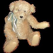 Adorable Ganz mohair bear 19 inches tall