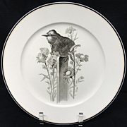 SALE Pierre Mallet Brown Transferware ORNITHOLOGY Plate ~ 1870 #C