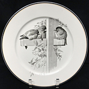 SALE Pierre Mallet Brown Transferware ORNITHOLOGY Plate ~ 1870 #D