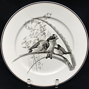 SALE Pierre Mallet Brown Transferware ORNITHOLOGY Plate ~ 1870 #G