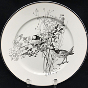 SALE Pierre Mallet Brown Transferware ORNITHOLOGY Plate ~ 1870 #H