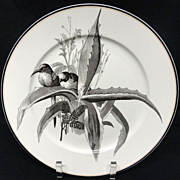 SALE Pierre Mallet Brown Transferware ORNITHOLOGY Plate ~ 1870 #L