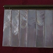 Volupte Mother Of Pearl and Brass Carry All