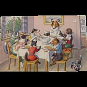 SOLD Alfred Mainzer Dressed Cats Postcard Max Kunzli Illustrated Zurich, Switzerland Cats & Do