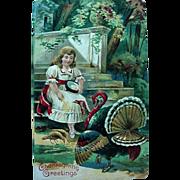 Thanksgiving Greetings Postcard Girl Feeding The Turkeys