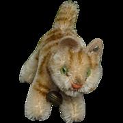 Sweet Steiff Kitty