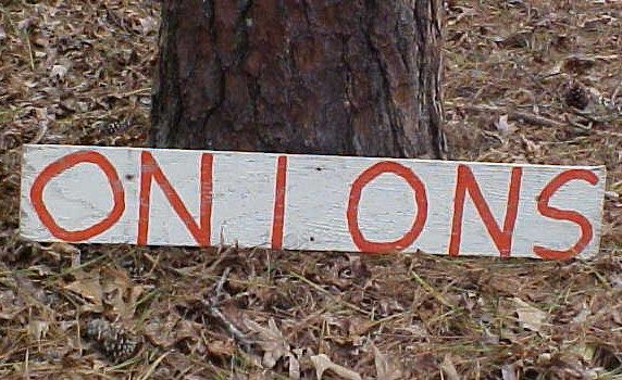 Old Wooden Farm Produce Stand Onions Advertising Trade Sign
