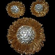 REDUCED Vintage Rhinestone Pin & Earring Set