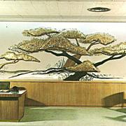 Dallas, Texas Money Tree Postcard