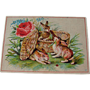 Vintage Advertising Card / Rabbits in Basket / Trade Card / Collectible Trade Card / Vintage T