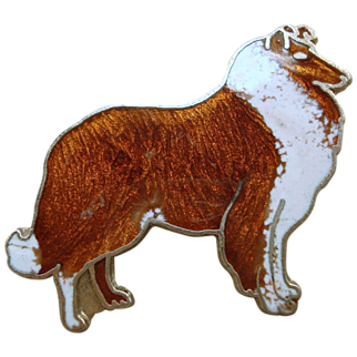 SALE Collie Dog Pin
