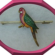 English Rosella Bar Pin