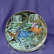 Exotic Birds of Tropique Kingfisher Plate