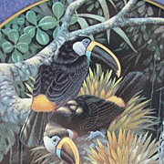 Cuvier's Toucans Plate by Lenox