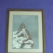 Bill Jaxson Thunder & Fury Hawk Print