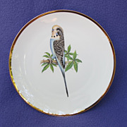 Blue Parakeet Plate from Bareuther of Germany