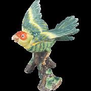 Milano Porcelain Carolina Parakeet Figurine