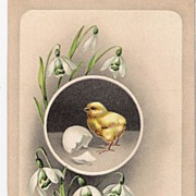 """""""A Happy Easter"""" - Baby Chick"""