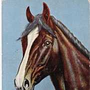 """Just a Pal"" - A/S L H 'Dude' Larson"" - Animal - Horse - Postcard"
