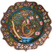 Chinese cloisonne dish depicting Phoenix rebirth and comet Ison debris field 19th century