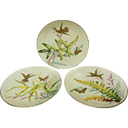 Minton Bouley English Porcelain Set With Hummingbirds