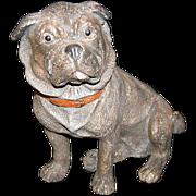 Austrian Terracotta Pug Dog