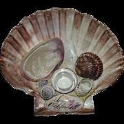 "Mint ""Souvenir of Rockford,ILL."" Shell Art Ink Stand !"