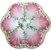 Antique Majolica Oyster Plate ~ Pink 'n Green ~ Marked