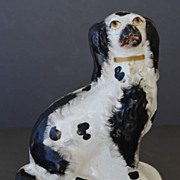 Antique Staffordshire Spaniel Dog