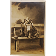 Antique RPPC French Dog With Violin Postcard C1912