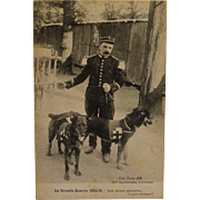 French WW1 Postcard ~ Red Cross Dogs