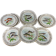 "SALE Antique to Vintage Haviland Limoges Set of 11 Transfer & Painted Fish Plates, 8.5"""