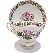 Royal Albert Cotswold Fine Bone China Demitasse Cup & Saucer