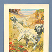 Hintermeister Print - English Setters and Quail