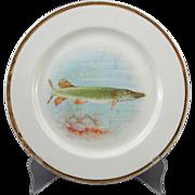 O.P.CO. Syracuse Onondaga China Pike Fish Plate