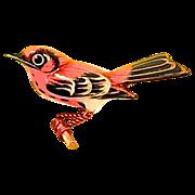 Takahashi Designer Bird Brooch