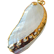 Pendant Gold Trimmed Mussel Clam