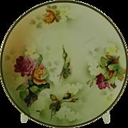 """SALE ES Erdmann Schlegelmilch Hand Decorated 9"""" Decorative Plate"""