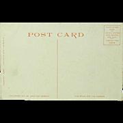 Poydras Street New Orleans Detroit Publishing Company Phostint