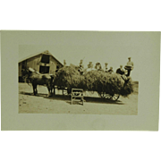 Real Photo of Vintage American Agriculture