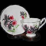 Queen Anne - Black Iris - Teacup Set